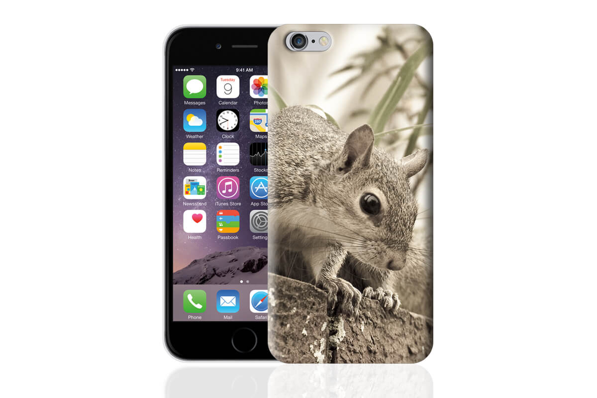 cover-iphone-6-M1